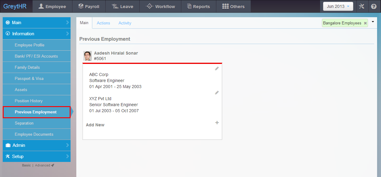 The Previous Employment page